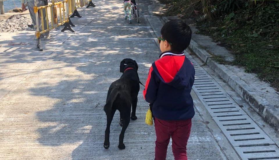 First time walking dog…